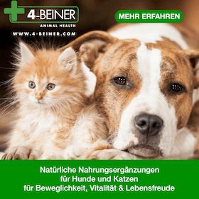www.4-beiner.com