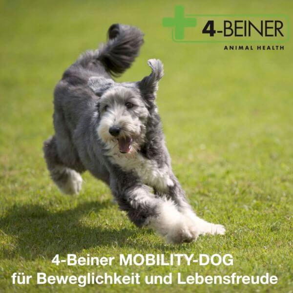 4-BEINER MOBILITY-DOG als natürliche Gelenkunterstützung speziell für ältere Hunde